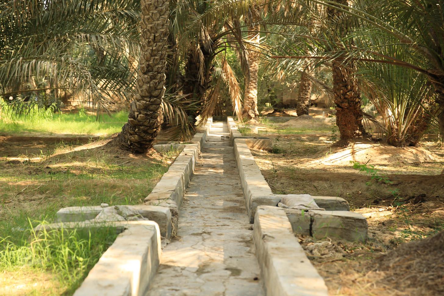 De oases van Al Ain